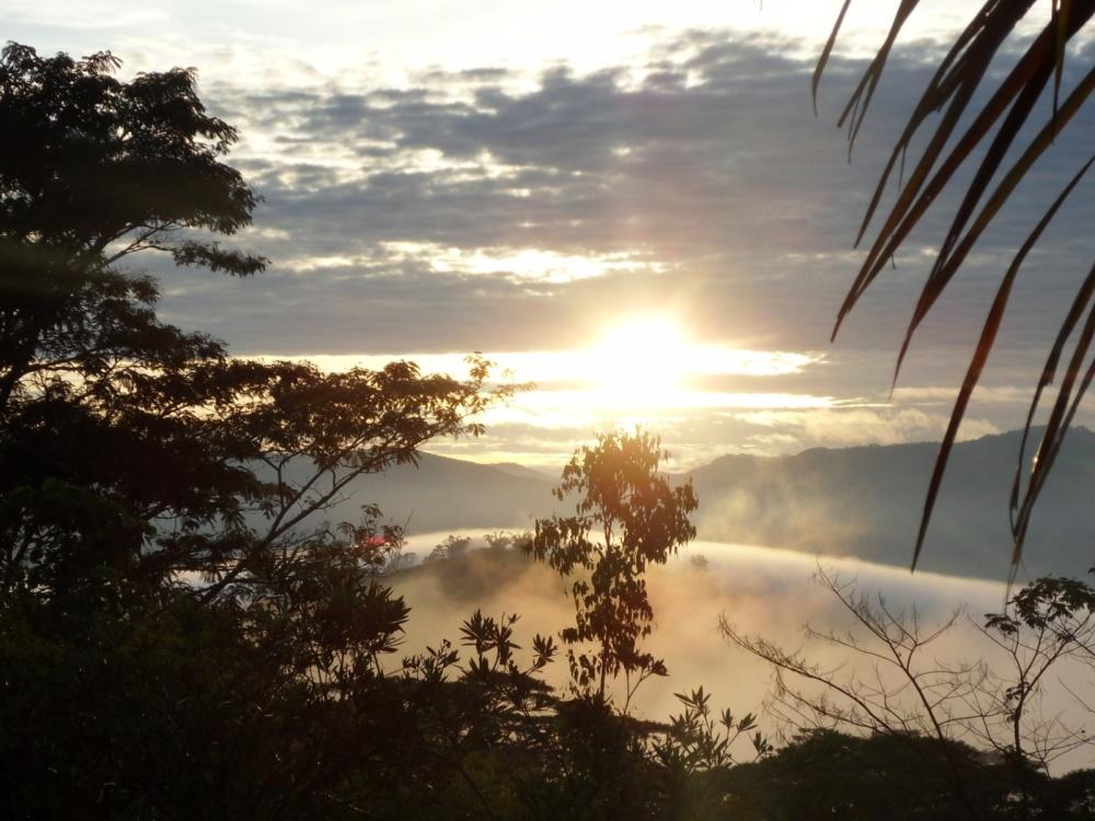 Timor 08